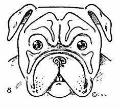 best 25 bulldog drawing ideas on pinterest english bulldog art