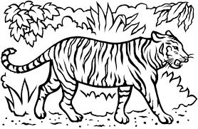 get creative save wild tigers
