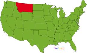 State Flower Of Montana - montana facts state fun facts about montana