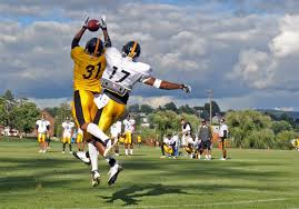 2014 steelers training camp guide new faces must help on both