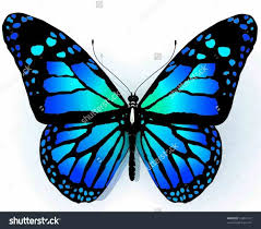 butterfly pics to color newcoloring123