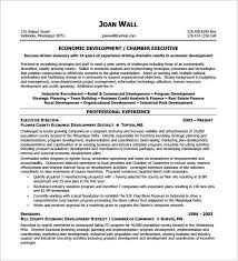 Executive Resume Template by The 25 Best Executive Resume Template Ideas On