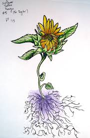 sunflower tattoo design 3 by zeezster on deviantart
