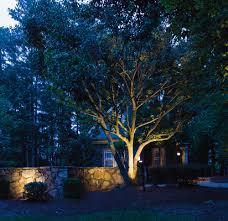 Led Landscape Tree Lights Outdoor Lighting Sonnenberg Landscaping