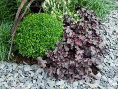 garden edging ideas u0026 tips hgtv