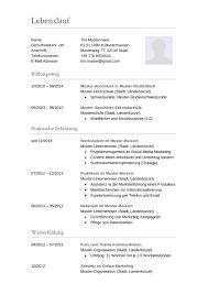 Lebenslauf Muster Ms Word Lebenslauf Muster F禺r Buchhalter Lebenslauf Designs