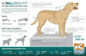guide dog harness 5 of the best harnesses for dogs that pull the dog effect
