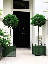 Topiary Planters - front door topiary i78 on coolest home decor arrangement ideas