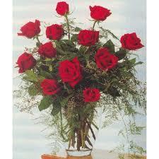 Dozen Roses Our Birthday