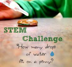 Challenge Water Drop Stem Challenge Drops Of Water On A Our Whimsical Days