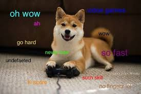 Doge Meme Shiba - pin by lexi the tardis on my nerdiness pinterest doge memes and