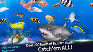 fishing rivals hook u0026 catch android apps on google play