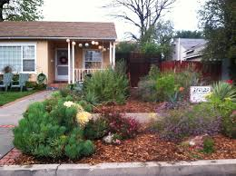 70 best drought tolerant front yard images on front