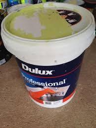 paint 2x dulux wash u0026wear low sheen colour vanilla quake 1 4