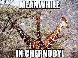 Drunk Giraffe Meme - daily mix part 819 fun