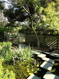 Raleigh Botanical Garden 50 Most Amazing Botanical Gardens And Arboretums In The