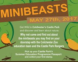 mini beasts colchester events company
