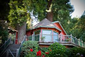 the house viewed fron the river nestled in a grove of redwoods