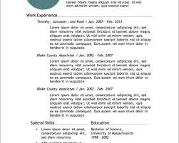 Best Infographic Resume Templates by Special Skills For Job Resume Resume For Your Job Application