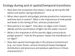 some thoughts on ecology ppt