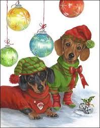 dachshund christmas cards doxie christmas cards