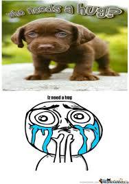 Cuteness Overload Meme - cuteness overload by denpex meme center