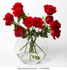 White Roses In A Vase Roses In A Glass Vase Stock Images Royalty Free Images U0026 Vectors