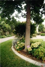 in 1985 a concerted effort was made to spruce up the landscaping