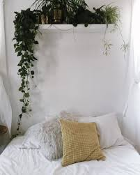 Bedroom Plants See This Instagram Photo By Larkandarrow U2022 4 Likes Home
