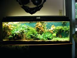 office design fish tank office feng shui full size of fish tank
