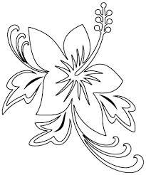 hibiscus u2013 alcatix com