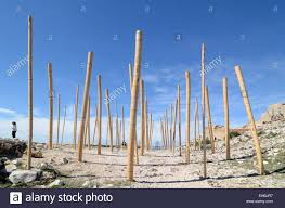 wind instrument musical bamboo poles or musical art installation