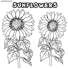 Sunflower Coloring Pages Coloring Pages To Download And Print Sunflower Coloring Page