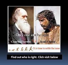 bureau veritas darwin find out now who is right darwin or click here the gospel