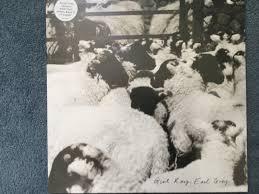 i hadn u0027t heard of rough trade album of the month august u2013 the culture club