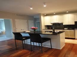 Kitchen Galley Designs Small Kitchen Galley Design Amazing Luxury Home Design