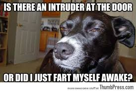 Funny Perverted Memes - sick twisted perverted funny and the plain truth page 10