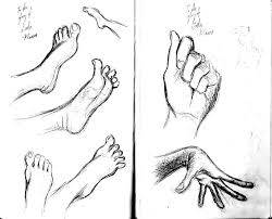 hands feet sketches by cartoonkate on deviantart