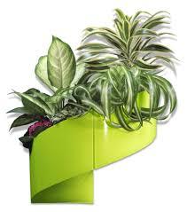 pot de fleur mural design vert flower pots u0026 white pinterest