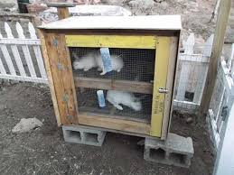 Diy Indoor Rabbit Hutch 50 Diy Rabbit Hutch Plans To Get You Started Keeping Rabbits