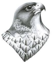coloring beautiful falcon head drawing coloring falcon