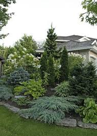 Landscaping Ideas For Backyard Privacy 95 Best Landscaping Images On Pinterest Landscaping