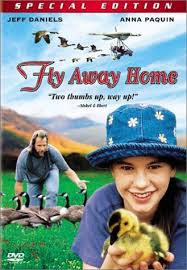 fly away home lesson plan lesson plan for fly away home hero s journey of internal growth