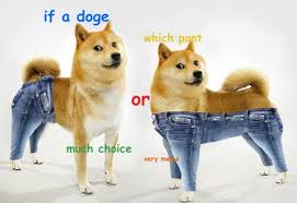 Memes Doge - internet s 19 best reactions to if a dog wore pants smosh