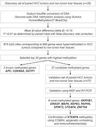 genome wide dna methylation analysis in hepatocellular carcinoma