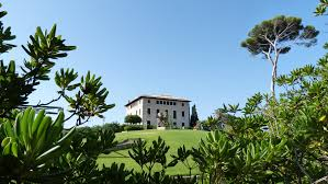 free images tree grass architecture villa mansion house