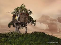 a tree house photo and desktop wallpaper