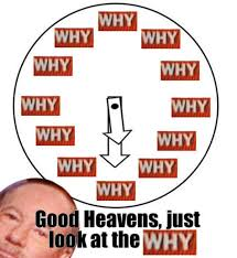 Find Your Meme - tony kornheiser s why know your meme