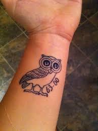 scott partridge athena u0027s owl