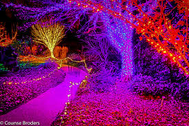 Botanical Gardens Atlanta Christmas Lights by Avance Creative Visions Avance Carpets U2013 Insist On It Page 3